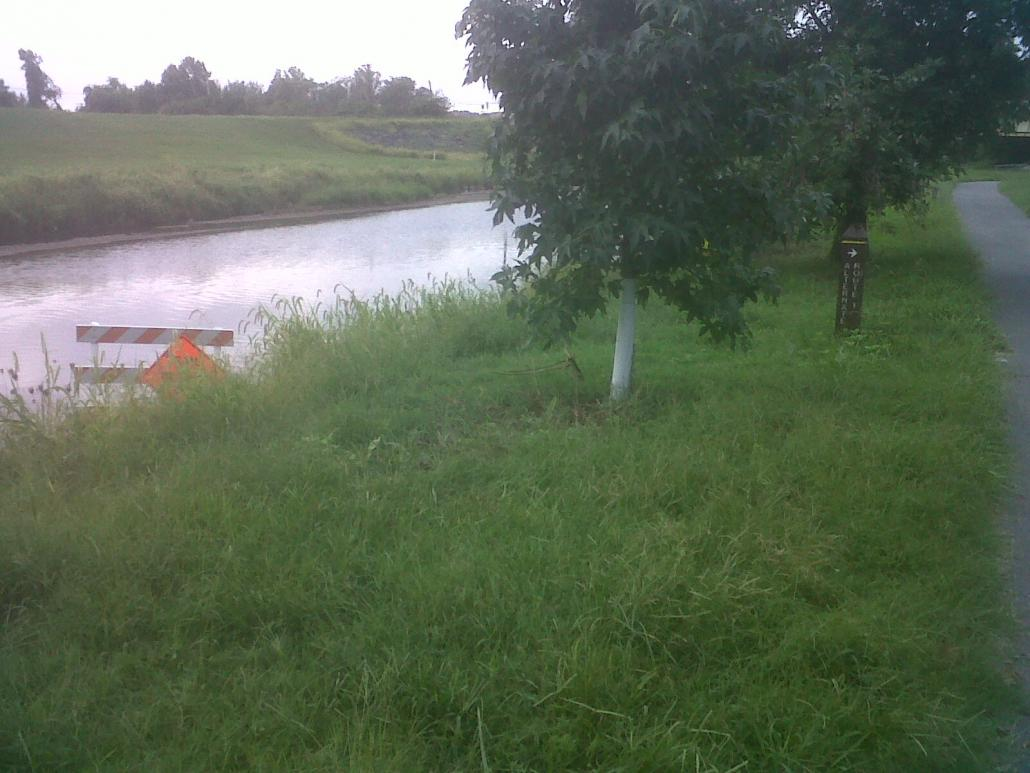 Name:  NE Branch trail not so closed as before.jpg Views: 144 Size:  93.9 KB