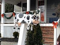 Click image for larger version.  Name:Mailox-Cow-4701 6th St S.jpg Views:54 Size:100.6 KB ID:22851