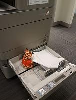 Click image for larger version.  Name:printer.JPG Views:24 Size:67.7 KB ID:19787