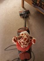 Click image for larger version.  Name:vacuuming.JPG Views:30 Size:51.7 KB ID:19653