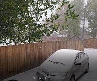 Click image for larger version.  Name:snow.jpg Views:42 Size:94.5 KB ID:21738