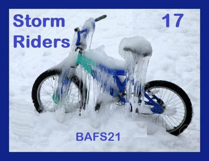 Name:  Storm Riders 17 BAFS 2021.jpg Views: 80 Size:  47.0 KB