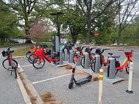 Click image for larger version.  Name:JUMP bikes parked in Capital Bikeshare station - Roosevelt Island - April 17 2021 - 2.jpg Views:38 Size:20.2 KB ID:25303
